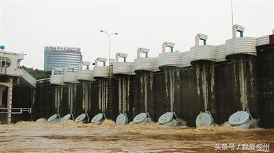 """柳州一股绳,考验城市良心 展现血肉真情——我市积极应对""""7·2""""洪水纪实"""