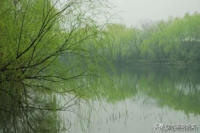 """咏柳,除了""""碧玉妆成一树高"""",还有一首著名的""""咏柳""""诗,你知道吗?"""