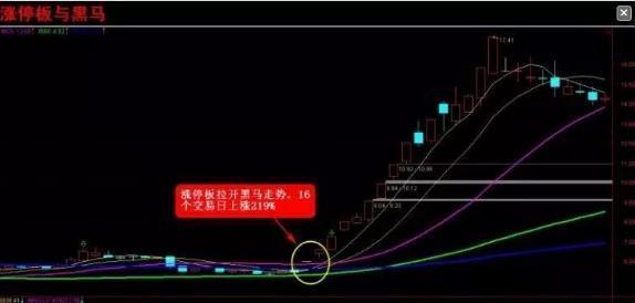 """中国股市最牛的人:教你最""""笨""""的"""