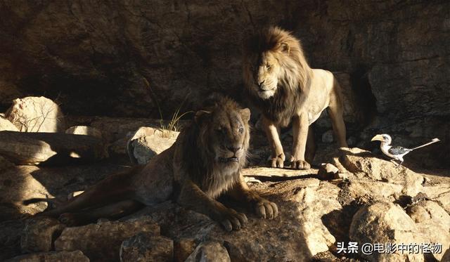 狮子王与豺,跟这4部电影一对比,真兽版《狮子王》的优缺点就很明显了