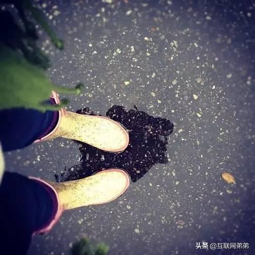 咏雨,雨能给万物生命,也给万物徒增烦恼。咏雨诗百首