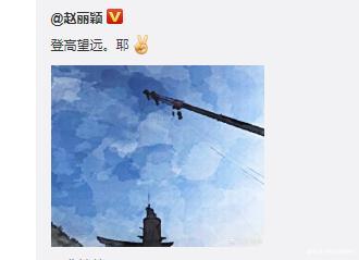 赵丽颖更新掉威亚的照片~这高度,也太吓人了吧!